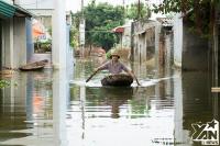 Có tin được không, ngay ở Hà Nội, dân vẫn phải bơi thuyền trong nhà, lợn gà ở chung với người