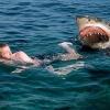 Ngược đời chuyện người đàn ông mang ơn con cá mập đã tấn công mình đến suýt chết