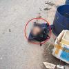 Tin mới nhất về vụ người đàn ông nghi bị sát hại, vứt đầu vào thùng rác ở Bình Dương