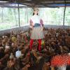 Cười muốn xỉu với dân mạng khi đua nhau chế hình thời trang sao Việt tuần qua