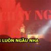 Fan phát cuồng với màn trình diễn live Chạy Ngay Đi của Sơn Tùng: