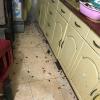 Cảnh tượng hãi hùng ngôi nhà bị gián xâm chiếm sau mưa khiến CĐM phát hoảng