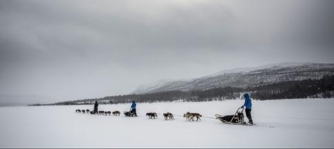 Hành trình Polar năm 2015.(Ảnh: Thanh Niên)
