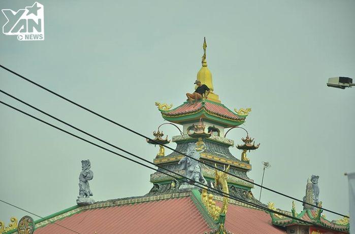Sài Gòn: Thanh niên ngáo đá trèo lên nóc chùa la hét từ sáng sớm gây náo loạn khu phố