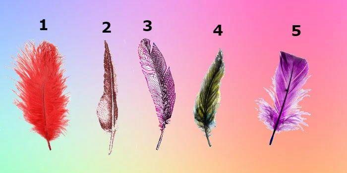 Trong số năm chiếc lông trong bức tranh trên đây, bạn hãy chọn lấy một chiếc và chờ xem nó sẽ tiết lộ điều gì về bản thân bạn nhé!