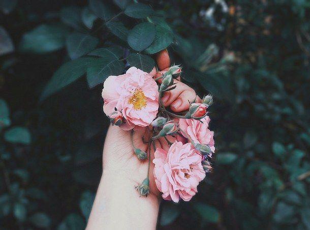 Đóa hoa tình yêu tưởng như đã tàn lụi, đâu ngờ lại nở thêm lần nữa