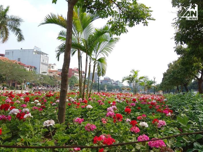 Tuyến phố đi bộ thứ 2 của Hà Nội đang gấp rút hoàn thiện để kịp mở cửa khai trương vào ngày 11/5 tới