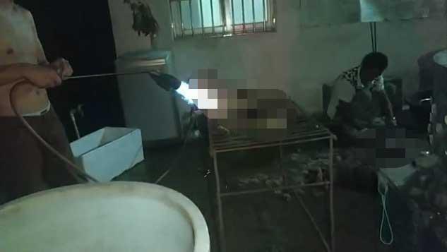 Những hình ảnh khủng khiếp trong một lò mổ tại Trung Quốc cho thấy chúng bị đánh đến chết và thiêu bằng lửa.