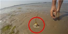 Điều bất ngờ xảy ra khi đổ muối vào lỗ nhỏ trên cát