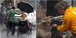 Những bức ảnh về lòng tốt khiến bạn có thêm niềm tin vào cuộc sống