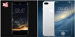Trong tương lai, màn hình iPhone sẽ như thế nào?