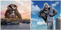 Té ghế loạt ảnh 'mang Kong đi khắp Việt Nam' của 'thánh lầy photoshop'