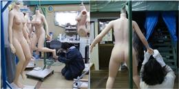 'Mục sở thị' nhà máy sản xuất búp bê tình dục lâu đời nhất Nhật Bản