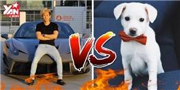 """Sự khác nhau đến ngỡ ngàng khi """"tán gái"""" bằng siêu xe và... chó"""