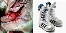 Vén bức màn bí ẩn của xác ướp 1.500 tuổi đi giày thể thao hiện đại