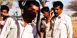 Mải mê chụp hình cùng rắn độc, một giờ sau người đàn ông tử vong