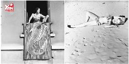 'Loạn mắt' với loạt ảnh hiếm về sự trùng hợp ngẫu nhiên có từ thời xưa