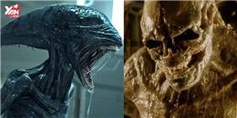 Tất tần tật về quái vật ngoài hành tinh trong loạt phim kinh dị Alien