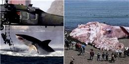10 bức ảnh photoshop lừa dối cả thế giới