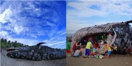Xác cá voi khổng lồ miệng đầy rác thải khiến nhiều người suy ngẫm