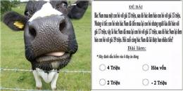 'Đau đầu' với bài toán mua đi bán lại 1 con bò dành cho học sinh lớp 3