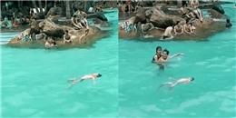 Cậu bé đuối nước, nổi trên hồ bơi có cả trăm người mà không ai biết