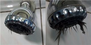 Hoảng hồn khi đang tắm thì thấy vật thể kinh dị thò ra khỏi vòi sen