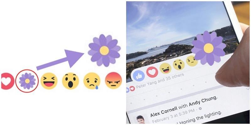 """Facebook giờ còn có nút reaction """"thả hoa"""""""