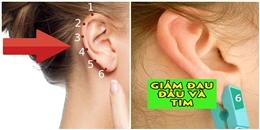 6 vị trí 'kẹp tai' để giảm đau khẩn cấp ai cũng cần phải biết