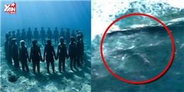 Những bí ẩn không lời giải đáp trong lòng đại dương hàng nghìn năm qua