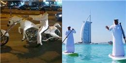 Giàu thôi chưa đủ, đây là những điều không tưởng mà chỉ Dubai mới có