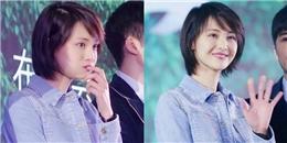 yan.vn - tin sao, ngôi sao - Không gục ngã vì scandal, Trịnh Sảng vẫn rạng rỡ với má phính cực yêu