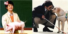 """5 bộ phim Nhật để dành cho """"con sen"""" coi cùng với các """"boss"""""""
