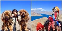 Cô gái xinh đẹp review xuất sắc về chuyến đi Tây Tạng