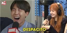 """Nghiền """"Despacito"""" nhưng các idol Kpop cover kiểu lầy lội khiến fan cười hết nấc"""