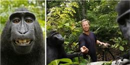Nhiếp ảnh gia nổi tiếng khánh kiệt vì bức hình 'chú khỉ tự sướng'