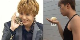 """Những idol Kpop với sở thích nuôi loạt thú cưng """"không đỡ nổi"""""""