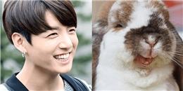 yan.vn - tin sao, ngôi sao - Loạt ảnh chứng minh idol Kpop chính là
