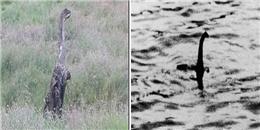 Lại phát hiện quái vật hồ Loch Ness chỉ cách 'nhà' 200km?