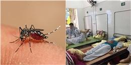 Hà Nội: Bệnh nhân thứ 3 tử vong do sốt xuất huyết