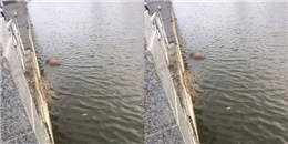 Nam thanh niên 17 tuổi tử vong dưới lòng sông Đáy sau khi mất liên lạc 2 ngày