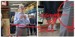 Phát hiện iPhone 8 ngay trong... túi quần Tim Cook, tổng giám đốc Apple