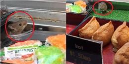 Đi mua sushi, 'tá hỏa' thấy chuột nhắt chạy tung tăng trên quầy
