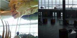 6 sân bay bị đồn là ma ám không dành cho hành khách bị yếu tim