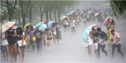Giải mã bất ngờ và thú vị cho những điều siêu khó hiểu vào mùa mưa