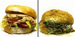 Nếu bạn để quên, thức ăn sẽ biến đổi một cách rùng rợn như thế này đây