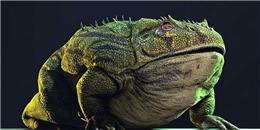 Con ếch đến từ địa ngục: Sát nhân khủng khiếp có thể hạ gục cả khủng long