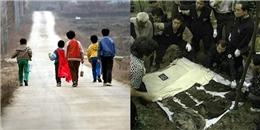 Vụ án những cậu bé ếch: Cái chết thảm của 5 đứa trẻ gây chấn động Hàn Quốc thế kỷ 20