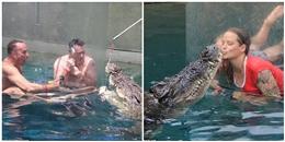 Nhiều du khách chi tiền triệu để trải nghiệm cảm giác mạnh, đối mặt với cá sấu ăn thịt người dài 5m