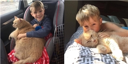 Sẽ chẳng ai thèm nhận nuôi chú mèo già ú cho đến khi cậu bé tốt bụng này xuất hiện